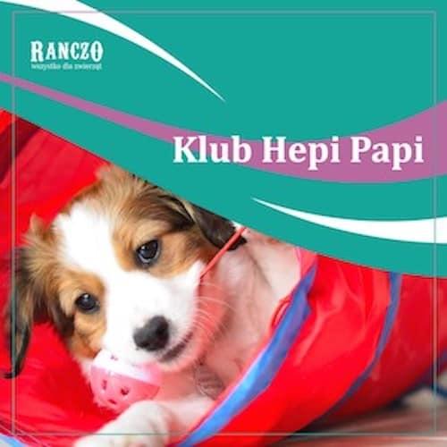 Szkolenie psów Hepi Papi Ranczo Wszystko dla Zwierząt